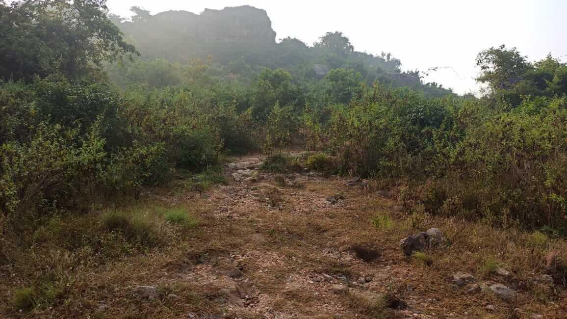 Hills at Kusapangi village are where the Anahat and Dakshina Kabat caves are located