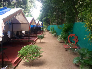 Luxury Tents at Bhitarkanika Nature Camp is one of the best nature camps in Odisha