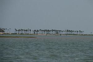 Water filled Ansupa Lake - Beautiful Lake close to Cuttack a famous picnic spot near Cuttack