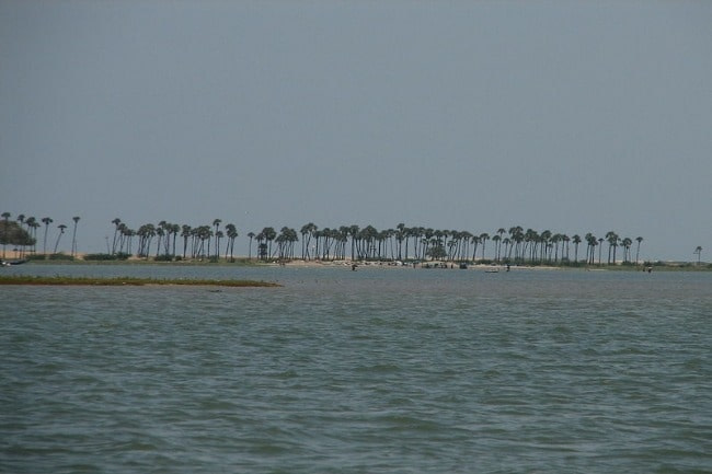 Water filled Ansupa Lake - Beautiful Lake close to Cuttack a famous picnic spot near Cuttack
